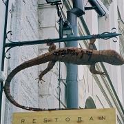 """tänava-reklaam restoranile """"Sisalik """"Tallinna Vanalinnas / Street sign for restaurant Sisalik in Tallinn Old Town"""